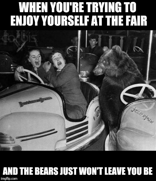 WHEN YOU'RE TRYING TO ENJOY YOURSELF AT THE FAIR AND THE BEARS JUST WON'T LEAVE YOU BE | image tagged in bears,fun | made w/ Imgflip meme maker