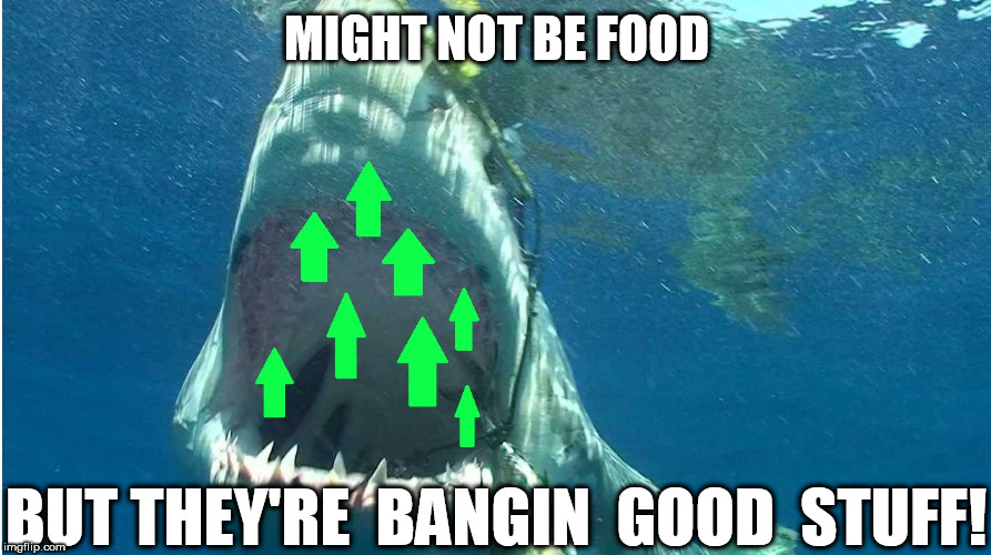 MIGHT NOT BE FOOD BUT THEY'RE  BANGIN  GOOD  STUFF! | made w/ Imgflip meme maker
