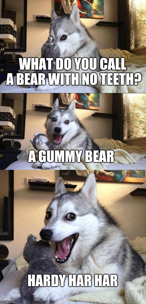 Bad Pun Dog | WHAT DO YOU CALL A BEAR WITH NO TEETH? A GUMMY BEAR HARDY HAR HAR | image tagged in memes,bad pun dog | made w/ Imgflip meme maker