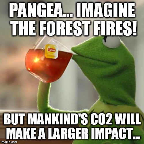 Climate Hoax | PANGEA... IMAGINE THE FOREST FIRES! BUT MANKIND'S CO2 WILL MAKE A LARGER IMPACT... | image tagged in memes,but thats none of my business,kermit the frog,climate hoax,co2,anti-human econazis | made w/ Imgflip meme maker