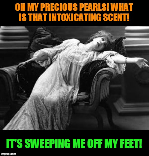 Faint | OH MY PRECIOUS PEARLS! WHAT IS THAT INTOXICATING SCENT! IT'S SWEEPING ME OFF MY FEET! | image tagged in faint | made w/ Imgflip meme maker