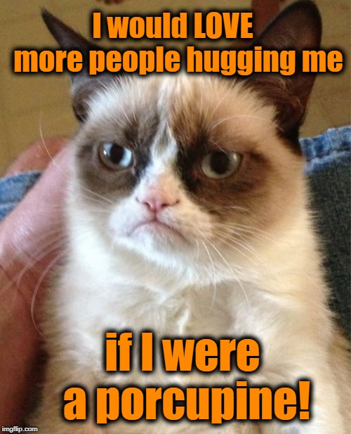 Grumpy Cat Meme |  I would LOVE  more people hugging me; if I were a porcupine! | image tagged in memes,grumpy cat | made w/ Imgflip meme maker