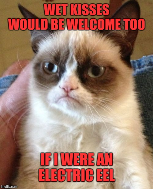 Grumpy Cat Meme | WET KISSES WOULD BE WELCOME TOO IF I WERE AN ELECTRIC EEL | image tagged in memes,grumpy cat | made w/ Imgflip meme maker