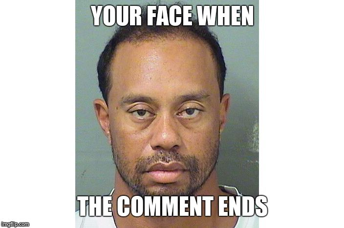 Tiger Woods DUI | YOUR FACE WHEN THE COMMENT ENDS | image tagged in tiger woods dui | made w/ Imgflip meme maker