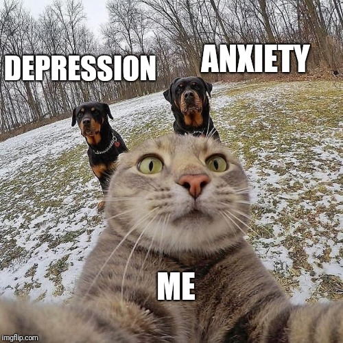 ME ANXIETY DEPRESSION | image tagged in animals,depression,anxiety | made w/ Imgflip meme maker