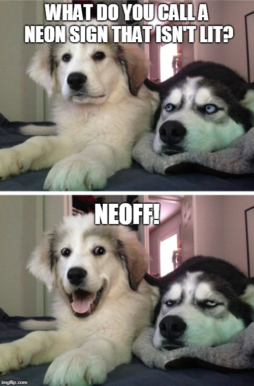 Bad Pun Husky | WHAT DO YOU CALL A NEON SIGN THAT ISN'T LIT? NEOFF! | image tagged in bad pun husky | made w/ Imgflip meme maker