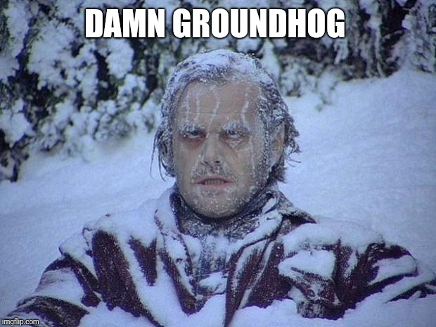 Jack Nicholson The Shining Snow | DAMN GROUNDHOG | image tagged in memes,jack nicholson the shining snow | made w/ Imgflip meme maker