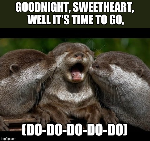 Barbershop Triplet | GOODNIGHT, SWEETHEART, WELL IT'S TIME TO GO, (DO-DO-DO-DO-DO) | image tagged in barber,goodnight,song lyrics,otter | made w/ Imgflip meme maker