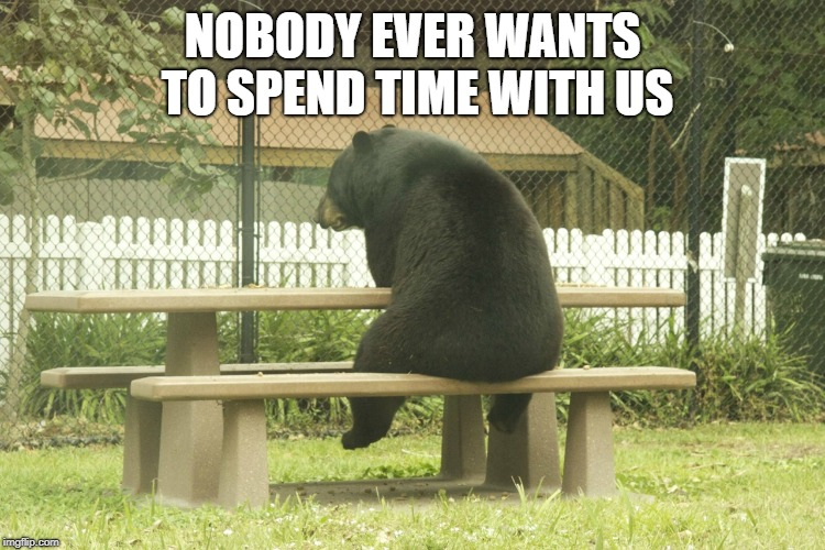 Sad Bear | NOBODY EVER WANTS TO SPEND TIME WITH US | image tagged in sad bear | made w/ Imgflip meme maker