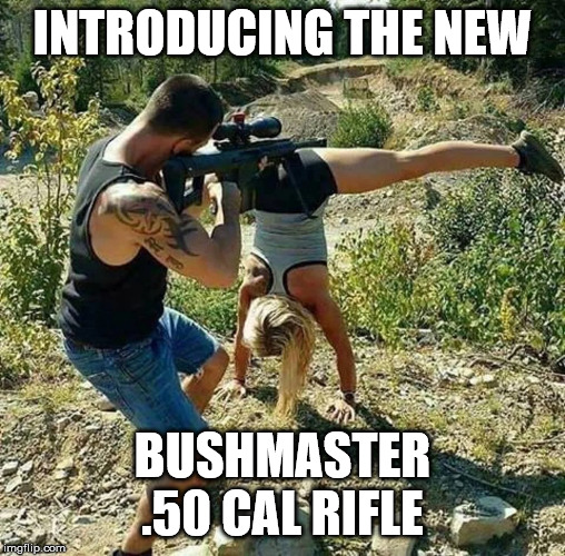 Bushmaster Rifle | INTRODUCING THE NEW BUSHMASTER .50 CAL RIFLE | image tagged in bush,rifle,sniper | made w/ Imgflip meme maker