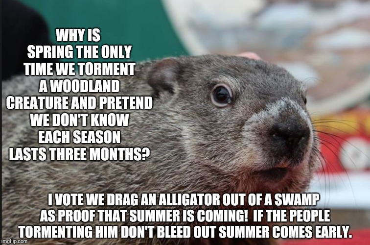 I Told My Ground Hog Neighbor About What They Do To Punxsutawney Phil So She's Organizing A March! | WHY IS SPRING THE ONLY TIME WE TORMENT A WOODLAND CREATURE AND PRETEND WE DON'T KNOW EACH SEASON LASTS THREE MONTHS? I VOTE WE DRAG AN ALLIG | image tagged in punxsutawney phil dice,memes,goofy memes,lol,stupid humor,seasons | made w/ Imgflip meme maker