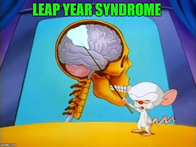 the brain | LEAP YEAR SYNDROME | image tagged in the brain | made w/ Imgflip meme maker