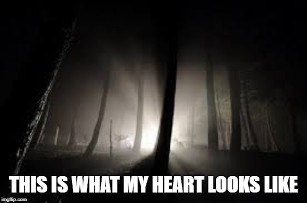 Hello Darkness My Old Friend |  THIS IS WHAT MY HEART LOOKS LIKE | image tagged in hello darkness my old friend,my heart | made w/ Imgflip meme maker
