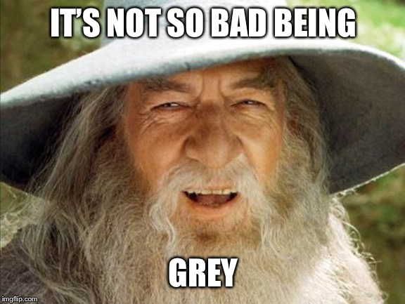 A Wizard Is Never Late | IT'S NOT SO BAD BEING GREY | image tagged in a wizard is never late | made w/ Imgflip meme maker