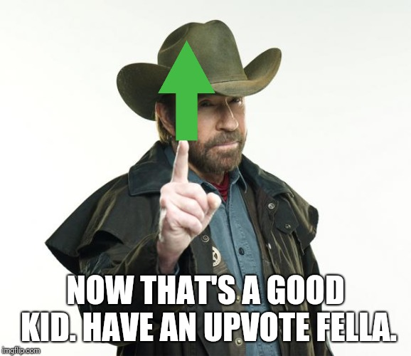 Chuck Norris Finger Meme | NOW THAT'S A GOOD KID. HAVE AN UPVOTE FELLA. | image tagged in memes,chuck norris finger,chuck norris | made w/ Imgflip meme maker