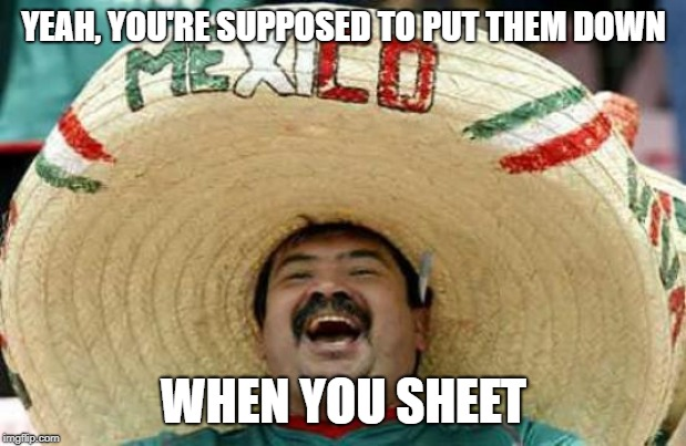 Happy Mexican | YEAH, YOU'RE SUPPOSED TO PUT THEM DOWN WHEN YOU SHEET | image tagged in happy mexican | made w/ Imgflip meme maker