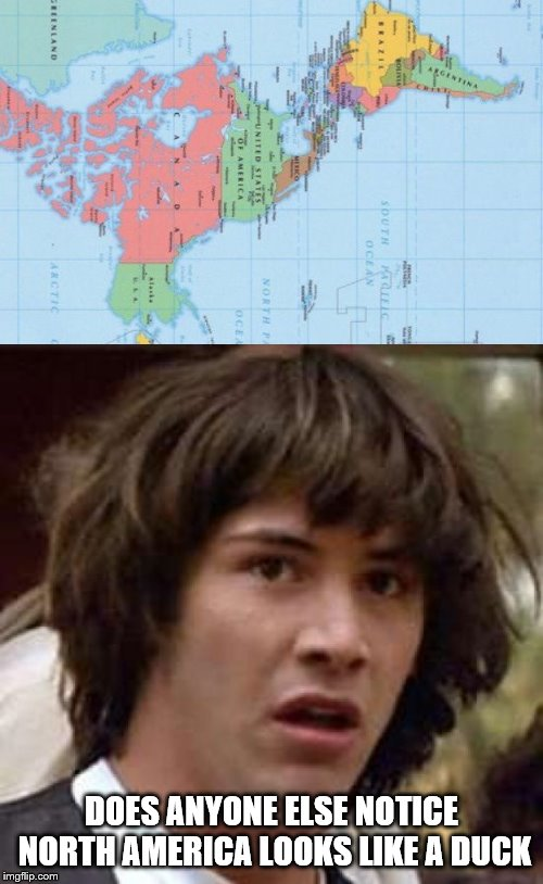 Seeing this just changed my life | DOES ANYONE ELSE NOTICE NORTH AMERICA LOOKS LIKE A DUCK | image tagged in memes,conspiracy keanu,duck | made w/ Imgflip meme maker