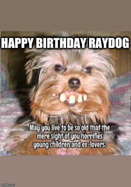 Happy Birthday Raydog | HAPPY BIRTHDAY RAYDOG | image tagged in happy birthday | made w/ Imgflip meme maker