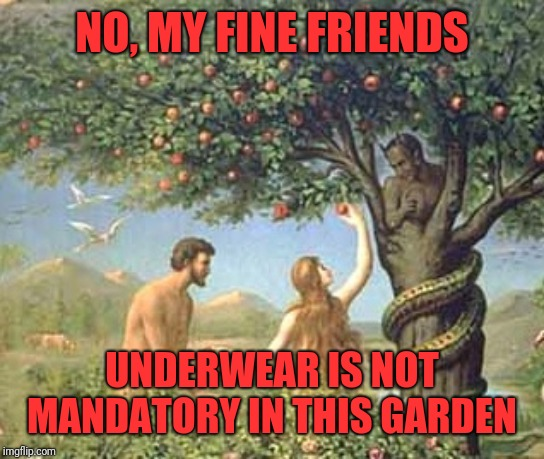Adam and Eve | NO, MY FINE FRIENDS UNDERWEAR IS NOT MANDATORY IN THIS GARDEN | image tagged in adam and eve | made w/ Imgflip meme maker