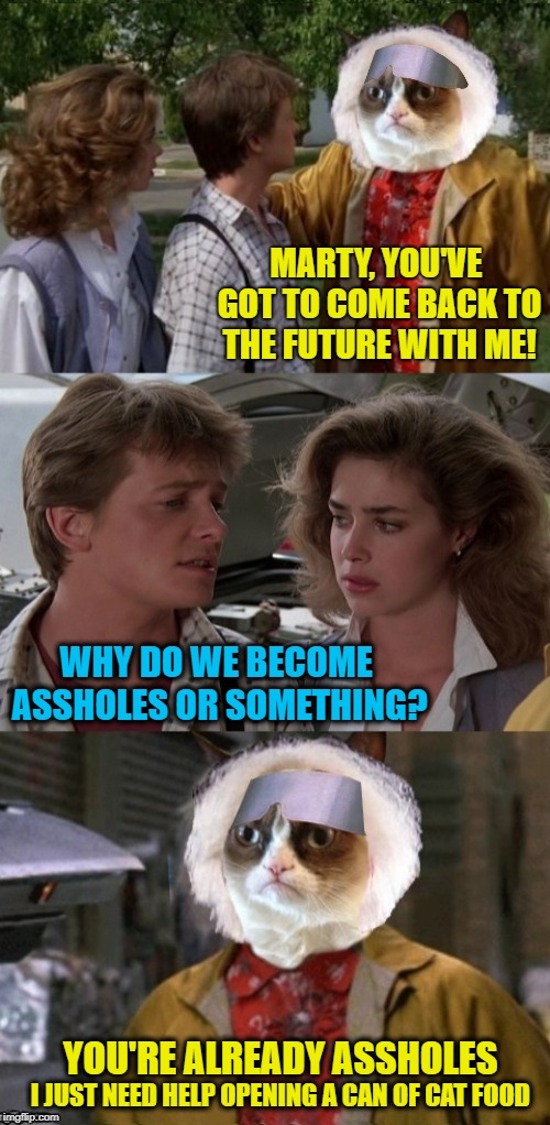 Cat to the future | MARTY, YOU'VE GOT TO COME BACK TO THE FUTURE WITH ME! WHY DO WE BECOME ASSHOLES OR SOMETHING? YOU'RE ALREADY ASSHOLES I JUST NEED HELP OPENI | image tagged in funny memes,grumpy cat,back to the future,cat | made w/ Imgflip meme maker