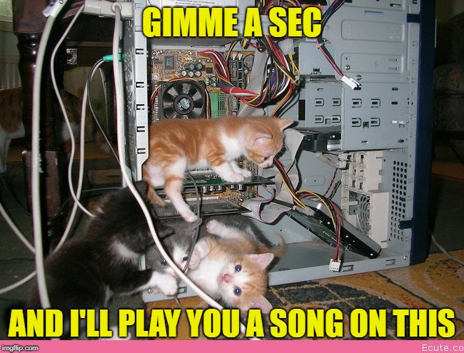 Kittens fixing a computer | GIMME A SEC AND I'LL PLAY YOU A SONG ON THIS | image tagged in kittens fixing a computer | made w/ Imgflip meme maker