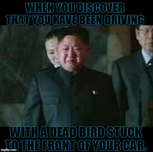 And you wonder how long it's been there. |  WHEN YOU DISCOVER THAT YOU HAVE BEEN DRIVING; WITH A DEAD BIRD STUCK TO THE FRONT OF YOUR CAR. | image tagged in memes,kim jong un sad,nixieknox | made w/ Imgflip meme maker