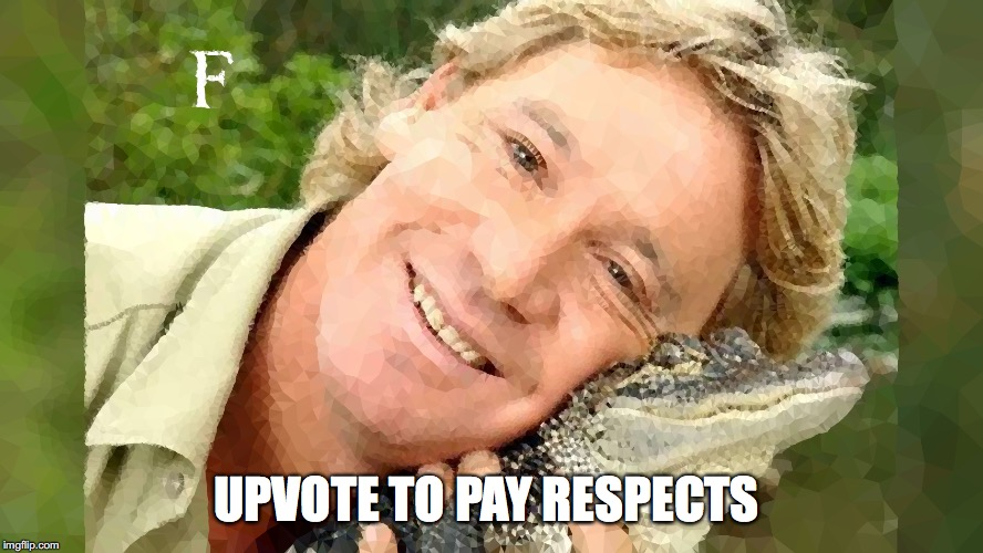 Upvote to Pay Respect | UPVOTE TO PAY RESPECTS | image tagged in steve irwin,crocodile,press f to pay respects,upvote,anti_peta | made w/ Imgflip meme maker