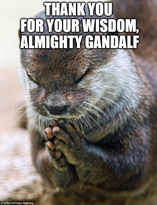 Thank you Lord Otter | THANK YOU FOR YOUR WISDOM, ALMIGHTY GANDALF | image tagged in thank you lord otter | made w/ Imgflip meme maker