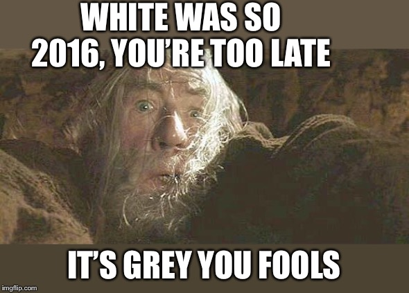 Gandalf Fly You Fools | WHITE WAS SO 2016, YOU'RE TOO LATE IT'S GREY YOU FOOLS | image tagged in gandalf fly you fools | made w/ Imgflip meme maker