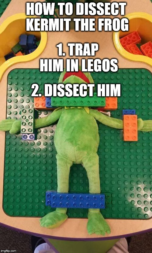 Not even Kermit was spared when Legos came along. |  HOW TO DISSECT KERMIT THE FROG; 1. TRAP HIM IN LEGOS; 2. DISSECT HIM | image tagged in kermit,legos,memes,damnation,funny,everyday | made w/ Imgflip meme maker