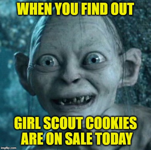 I've already bought 7 boxes. |  WHEN YOU FIND OUT; GIRL SCOUT COOKIES ARE ON SALE TODAY | image tagged in memes,gollum,girl scout cookies,addicted,funny,they must be laced with crack | made w/ Imgflip meme maker
