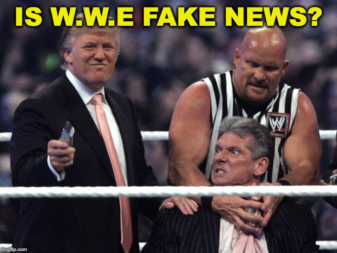 Trump WWE | IS W.W.E FAKE NEWS? | image tagged in trump wwe,fake news,pro wrestling | made w/ Imgflip meme maker