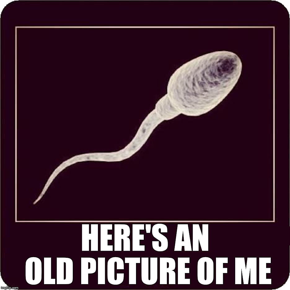 Here's An Old Picture Of Me | HERE'S AN OLD PICTURE OF ME | image tagged in sperm,old,funny picture | made w/ Imgflip meme maker