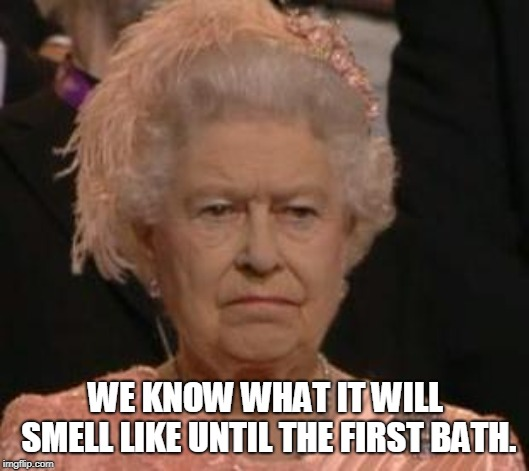 queen | WE KNOW WHAT IT WILL SMELL LIKE UNTIL THE FIRST BATH. | image tagged in queen | made w/ Imgflip meme maker