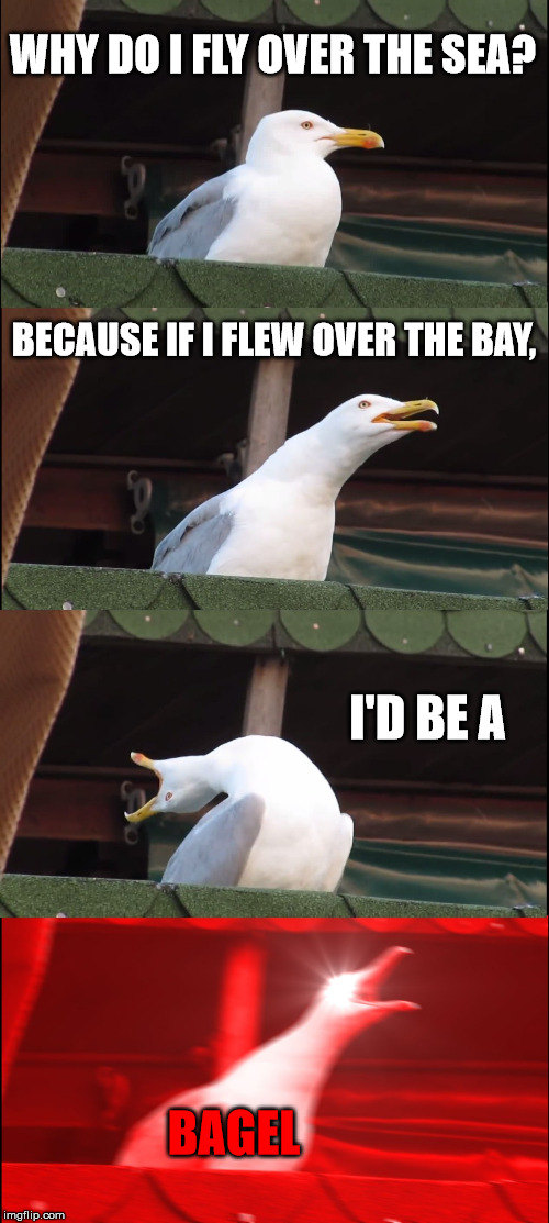 Baygulls | WHY DO I FLY OVER THE SEA? BECAUSE IF I FLEW OVER THE BAY, I'D BE A BAGEL | image tagged in memes,inhaling seagull,seagull,bagels,sea,flying | made w/ Imgflip meme maker