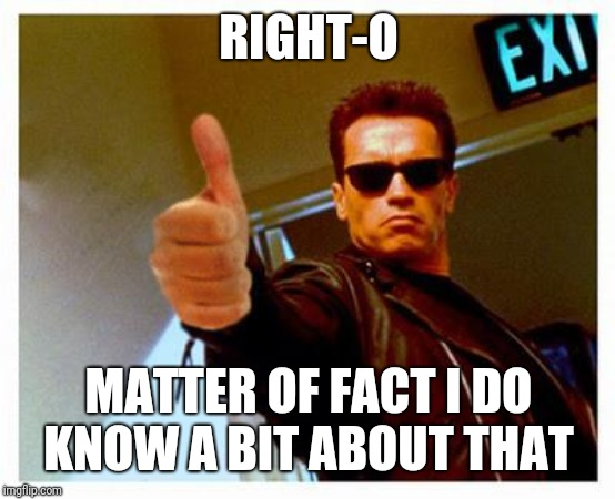 terminator thumbs up | RIGHT-O MATTER OF FACT I DO KNOW A BIT ABOUT THAT | image tagged in terminator thumbs up | made w/ Imgflip meme maker