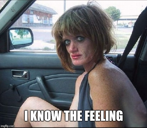 crack whore hooker | I KNOW THE FEELING | image tagged in crack whore hooker | made w/ Imgflip meme maker