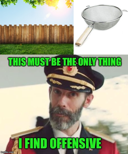 THIS MUST BE THE ONLY THING I FIND OFFENSIVE | image tagged in captain obvious,fence aka border wall | made w/ Imgflip meme maker