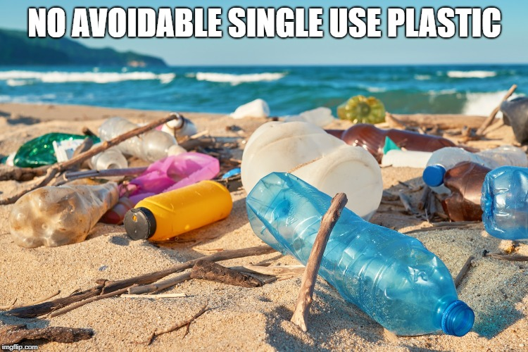 Plastic | NO AVOIDABLE SINGLE USE PLASTIC | image tagged in environmental | made w/ Imgflip meme maker