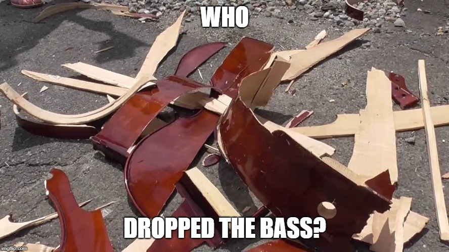 Bass Drop | WHO DROPPED THE BASS? | image tagged in memes,bass,who,dropped | made w/ Imgflip meme maker