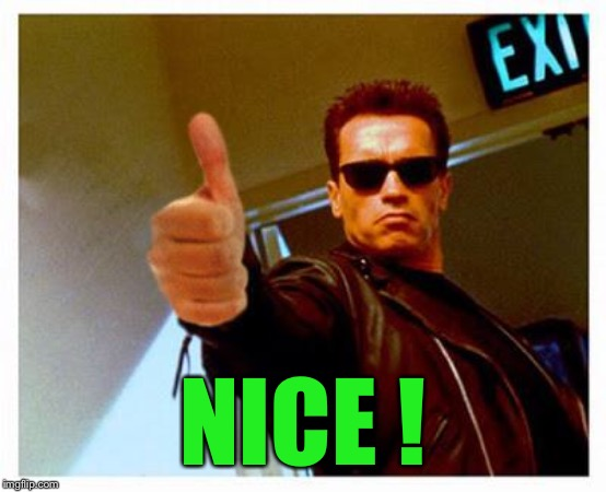 terminator thumbs up | NICE ! | image tagged in terminator thumbs up | made w/ Imgflip meme maker