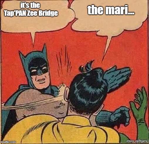 Batman slapping robin mirror | it's the Tap'PAN Zee Bridge the mari... | image tagged in batman slapping robin mirror | made w/ Imgflip meme maker