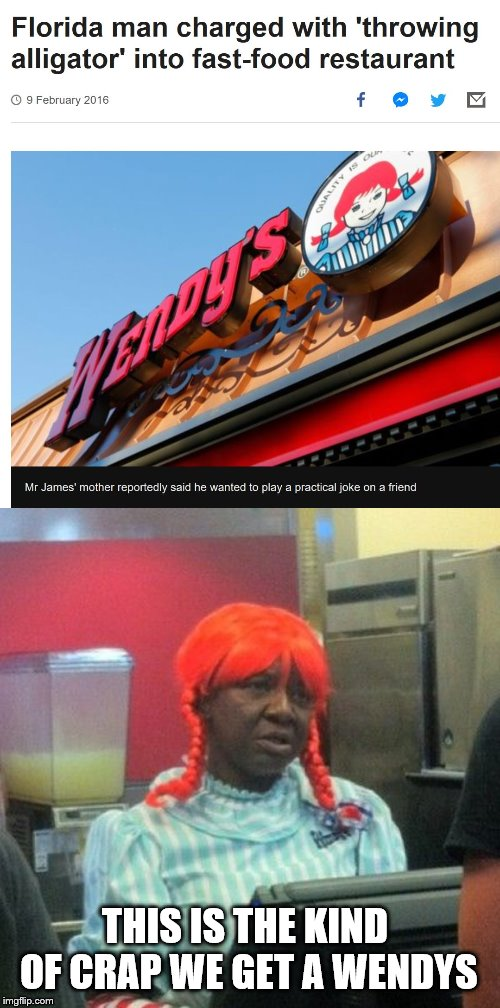 Florida Man Week 3/3 to 3/10 A Claybourne and Triumph_9 Event | THIS IS THE KIND OF CRAP WE GET A WENDYS | image tagged in wendys,florida man week,claybourne,triumph_9,florida man | made w/ Imgflip meme maker
