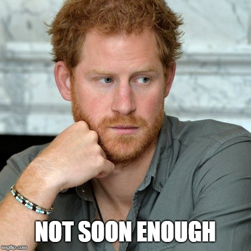 Prince Harry | NOT SOON ENOUGH | image tagged in prince harry | made w/ Imgflip meme maker