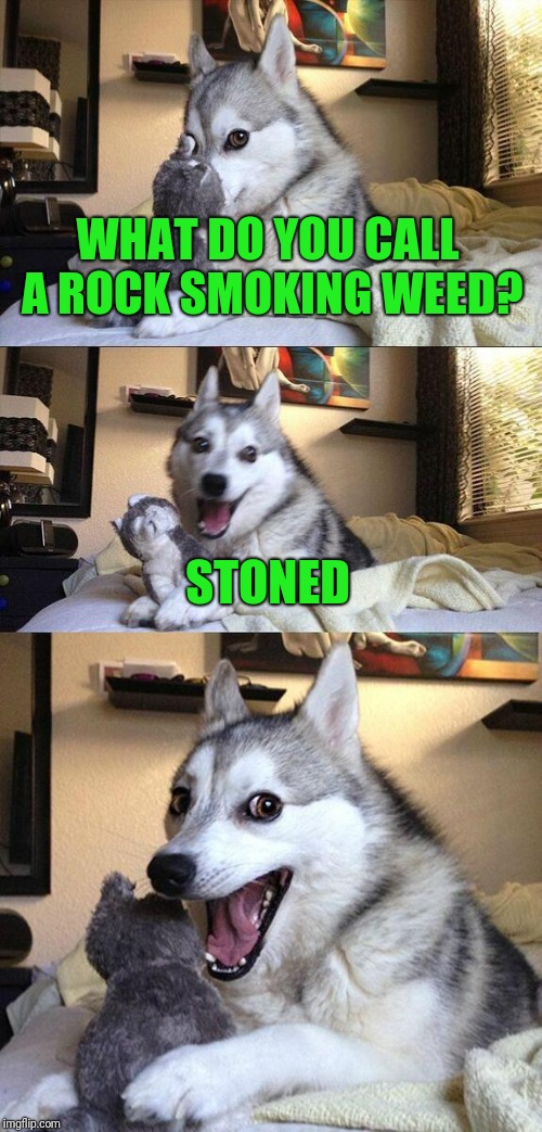 Isn't it Funny? |  WHAT DO YOU CALL A ROCK SMOKING WEED? STONED | image tagged in memes,bad pun dog,weed,rocks,rock | made w/ Imgflip meme maker
