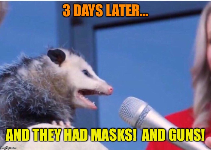 3 DAYS LATER... AND THEY HAD MASKS!  AND GUNS! | made w/ Imgflip meme maker