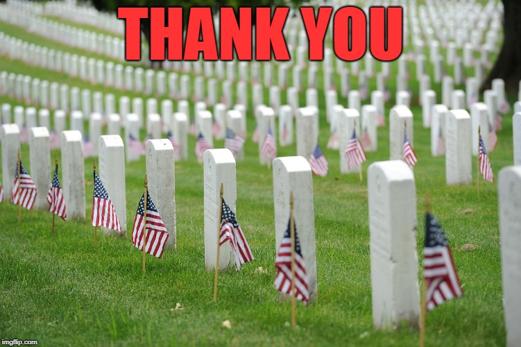 No Politics...Just Appreciation | THANK YOU | image tagged in arlington,military,sacrifice,america,veterans | made w/ Imgflip meme maker