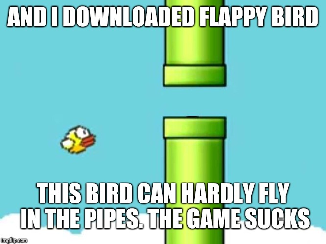 Fatigued Flappy Bird | AND I DOWNLOADED FLAPPY BIRD THIS BIRD CAN HARDLY FLY IN THE PIPES. THE GAME SUCKS | image tagged in fatigued flappy bird | made w/ Imgflip meme maker
