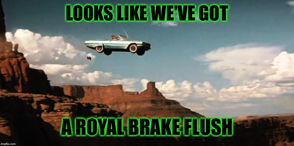 Thelma and Louise Airborne | LOOKS LIKE WE'VE GOT A ROYAL BRAKE FLUSH | image tagged in thelma and louise airborne | made w/ Imgflip meme maker