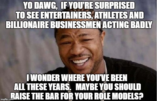 Yo Dawg Heard You | YO DAWG,  IF YOU'RE SURPRISED TO SEE ENTERTAINERS, ATHLETES AND BILLIONAIRE BUSINESSMEN ACTING BADLY I WONDER WHERE YOU'VE BEEN ALL THESE YE | image tagged in memes,yo dawg heard you | made w/ Imgflip meme maker